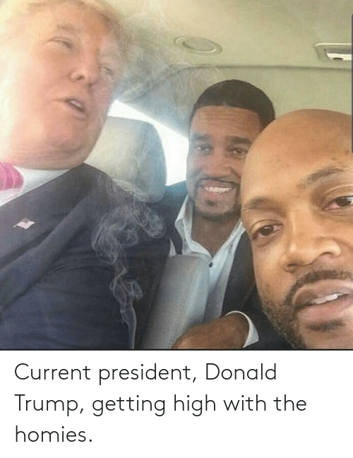 Donald Trump: Current president, Donald Trump, getting high with the homies.