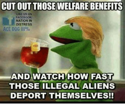 Aliens, Dog, and Ace: CUT OUT THOSE WELFARE BENEFITS  LIKE US ON  FACEBOCK  NATION IN  DISTRESS  ACE DOG Ill%  AND WATCHHOW FAST  THOSE ILLEGAL ALIENS  DEPORT THEMSELVES!!