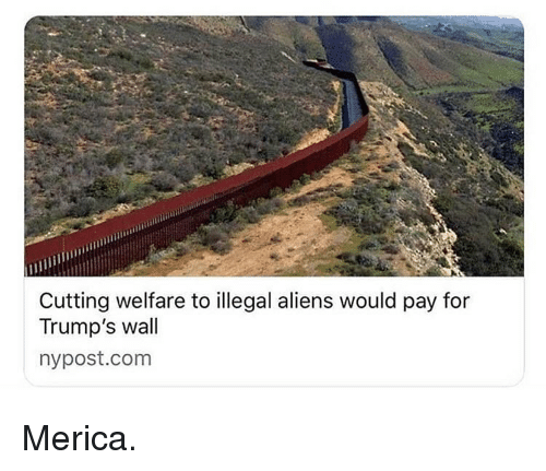 Illegal Aliens: Cutting welfare to illegal aliens would pay for  Trump's wall  nypost.com Merica.