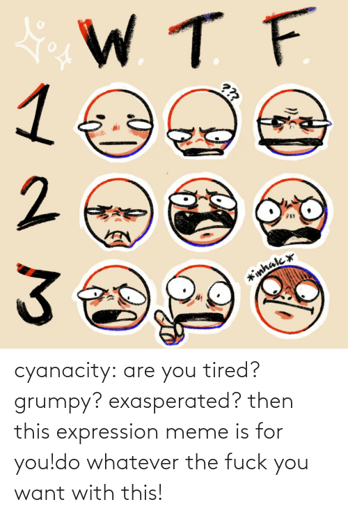 are you: cyanacity:  are you tired? grumpy? exasperated? then this expression meme is for you!do whatever the fuck you want with this!