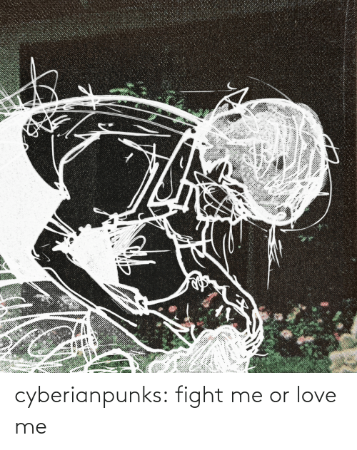 love me: cyberianpunks:  fight me or love me
