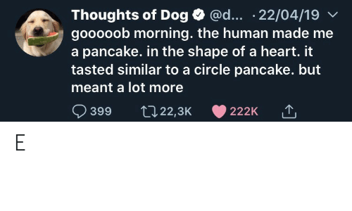 Heart, Dog, and Human: @d... .22/04/19  Thoughts of Dog  gooooob morning. the human made me  a pancake. in the shape of a heart. it  tasted similar to a circle pancake. but  meant a lot more  399  t22,3K  222K E