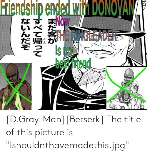 """Gray Man: [D.Gray-Man][Berserk] The title of this picture is """"Ishouldnthavemadethis.jpg"""""""