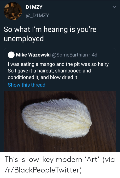 Low key: D1 MZY  @_D1MZY  So what I'm hearing is you're  unemployed  Mike Wazowski @SomeEarthian 4d  I was eating a mango and the pit was so hairy  So I gave it a haircut, shampooed and  conditioned it, and blow dried it  Show this thread This is low-key modern 'Art' (via /r/BlackPeopleTwitter)