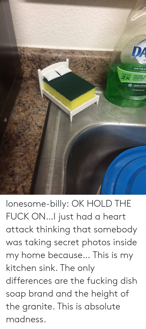 The Height Of: DA  ANTIBA  HAND  UP TO  2X DISHES  PER DROP VS NON-ULT  WHILE SUDS LAST  apple bloss  DISHWASHING LIQUR  LOL (LO60T) 342 lonesome-billy:  OK HOLD THE FUCK ON…I just had a heart attack thinking that somebody was taking secret photos inside my home because… This is my kitchen sink. The only differences are the fucking dish soap brand and the height of the granite. This is absolute madness.