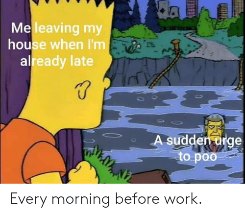 poo: da  Meleaving my  house when I'm  already late  A sudden urge  to poo Every morning before work.