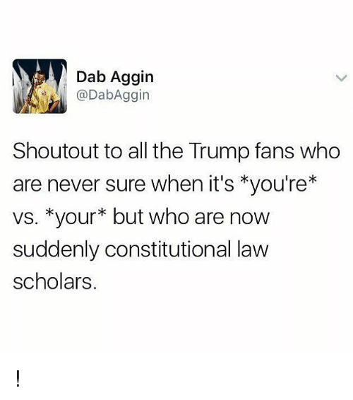 Memes, Trump, and Never: Dab Aggin  DabAggin  Shoutout to all the Trump fans who  are never sure when it's *you're*  vs. *your* but who are now  suddenly constitutional law  scholars !