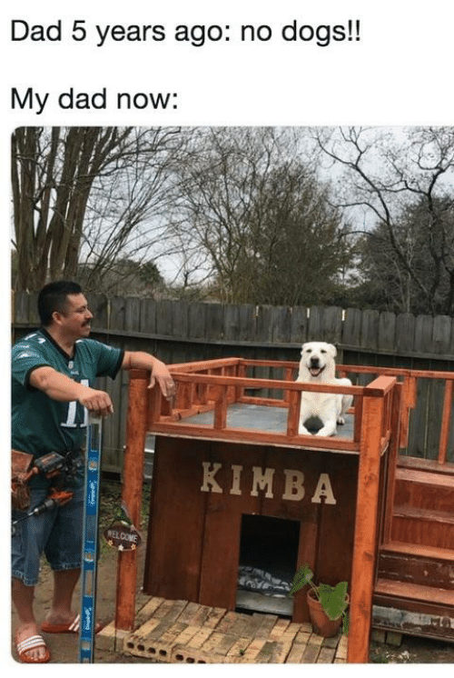 Dad, Dank, and Dogs: Dad 5 years ago: no dogs!!  My dad now:  KIMBA