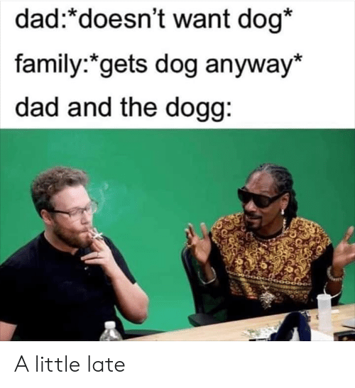 dogg: dad:*doesn't want dog*  family:*gets dog anyway*  dad and the dogg: A little late