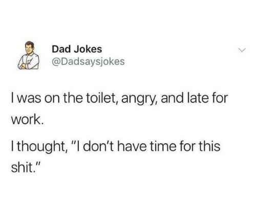 """On The Toilet: Dad Jokes  @Dadsaysjokes  I was on the toilet, angry, and late for  work.  Ithought, """"I don't have time for this  shit."""""""