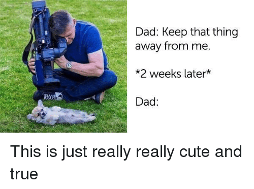 Cute, Dad, and True: Dad: Keep that thing  away from me.  *2 weeks later*  Dad: This is just really really cute and true