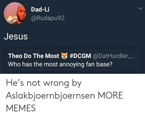 Most Annoying: Dad-Li  Rudapu92  Jesus  Theo Do The Most tg #DCGM @DatHurdler-...  Who has the most annoying fan base? He's not wrong by Aslakbjoernbjoernsen MORE MEMES