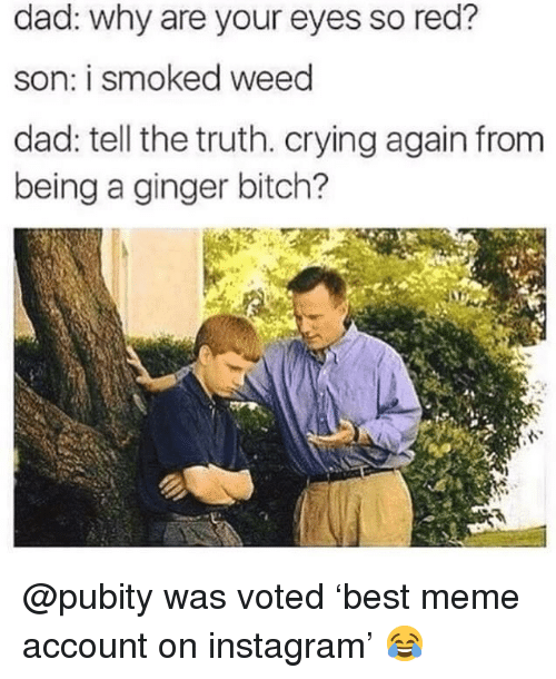 Bitch, Crying, and Dad: dad: why are your eyes so red?  son: i smoked weed  dad: tell the truth. crying again from  being a ginger bitch? @pubity was voted 'best meme account on instagram' 😂