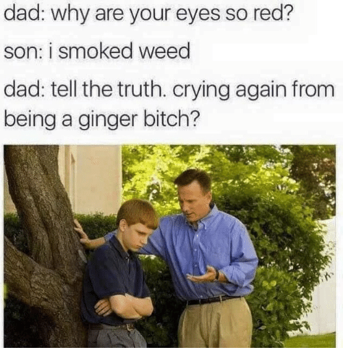 Bitch, Crying, and Dad: dad: why are your eyes so red?  son: i smoked weed  dad: tell the truth. crying again from  being a ginger bitch?