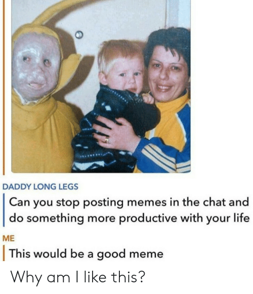 Life, Meme, and Memes: DADDY LONG LEGS  Can you stop posting memes in the chat and  do something more productive with your life  ME  This would be a good meme Why am I like this?