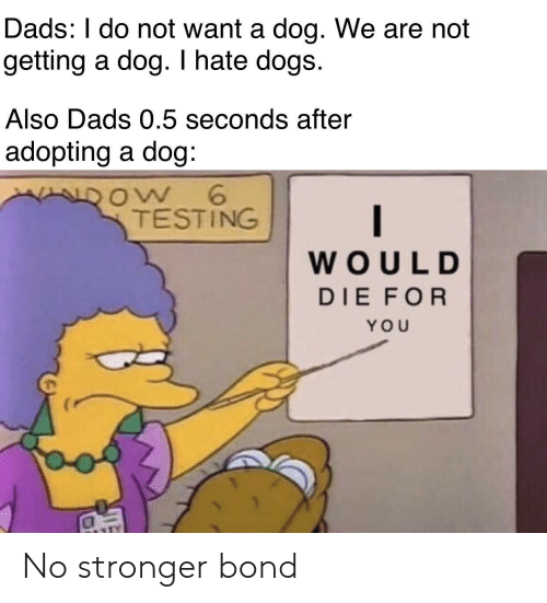 Dogs, Dog, and Bond: Dads: I do not want a dog. We are not  getting a dog. I hate dogs.  Also Dads 0.5 seconds after  adopting a dog:  ow 6  TESTING  WOULD  DIE FOR  YOU No stronger bond