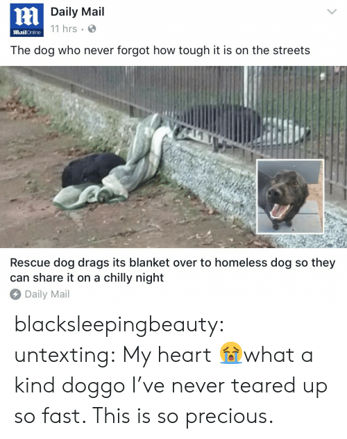 Teared Up: Daily Mail  11 hrs  MailOnline  The dog who never forgot how tough it is on the streets  Rescue dog drags its blanket over to homeless dog so they  can share it on a chilly night  Daily Mail blacksleepingbeauty: untexting: My heart 😭what a kind doggo I've never teared up so fast. This is so precious.