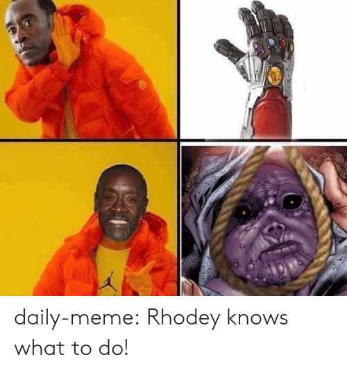 Meme, Tumblr, and Blog: daily-meme:  Rhodey knows what to do!