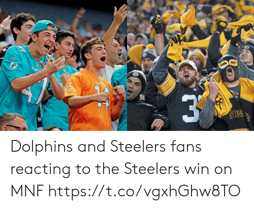 Reacting: Dal  Steel Dolphins and Steelers fans reacting to the Steelers win on MNF https://t.co/vgxhGhw8TO