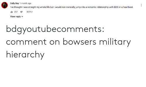 Life, Target, and Tumblr: Dally Boy 1 month ago  I've thought I was straight my whole life but I would non ironically jump into a romantic relationship with BDG in a heartbeat  257  REPLY  View reply  V bdgyoutubecomments:  comment on bowsers military hierarchy