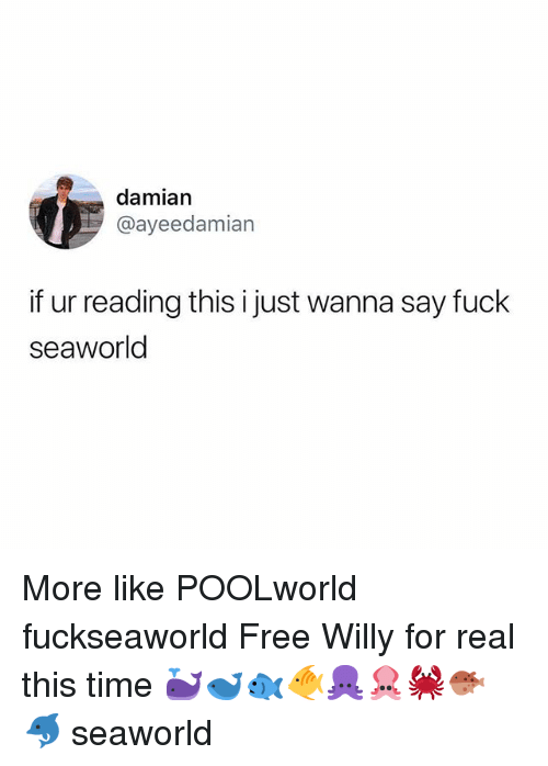 SeaWorld: damian  @ayeedamian  if ur reading this i just wanna say fuck  seaworld More like POOLworld fuckseaworld Free Willy for real this time 🐳🐋🐟🐠🐙🦑🦀🐡🐬 seaworld