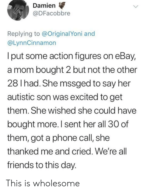 damien: Damien  @DFacobbre  Replying to @OriginalYoni and  @LynnCinnamon  I put some action figures on eBay,  a mom bought 2 but not the other  28 I had. She mssged to say her  autistic son was excited to get  them. She wished she could have  bought more. I sent her all 30 of  them, got a phone call, she  thanked me and cried. We're all  friends to this day. This is wholesome