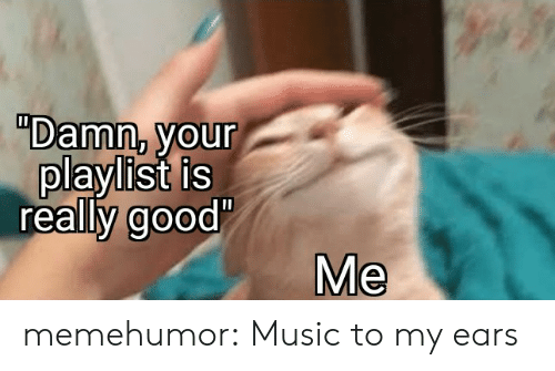 """Really Good: """"Damn, your  playlist is  really good'  Me memehumor:  Music to my ears"""