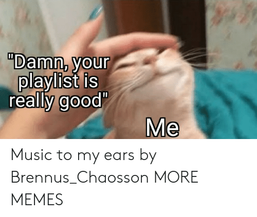"""Really Good: """"Damn, your  playlist is  really good'  Me Music to my ears by Brennus_Chaosson MORE MEMES"""