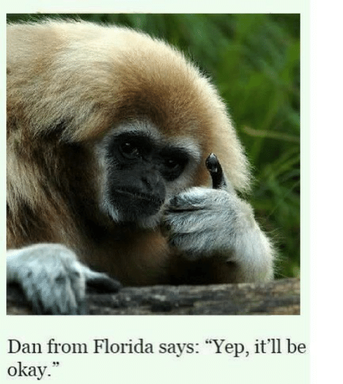 "Florida, Okay, and Yep: Dan from Florida says: ""Yep, it'll be  okay.  39"