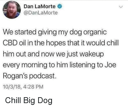 big dog: Dan LaMorte  @DanLaMorte  We started giving my dog organic  CBD oil in the hopes that it would chill  him out and now we just wakeup  every morning to him listening to Joe  Rogan's podcast.  10/3/18, 4:28 PM Chill Big Dog