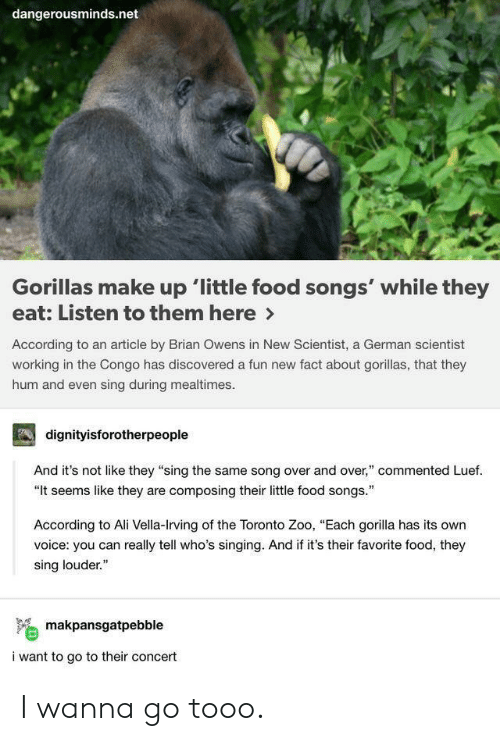 "hum: dangerousminds.net  Gorillas make up 'little food songs' while they  eat: Listen to them here>  According to an article by Brian Owens in New Scientist, a German scientist  working in the Congo has discovered a fun new fact about gorillas, that they  hum and even sing during mealtimes  dignityisforotherpeople  And it's not like they ""sing the same song over and over,"" commented Luef.  ""It seems like they are composing their little food songs.  According to Ali Vella-Irving of the Toronto Zoo, ""Each gorilla has its own  voice: you can really tell who's singing. And if it's their favorite food, they  sing louder.""  makpansgatpebble  i want to go to their concert I wanna go tooo."
