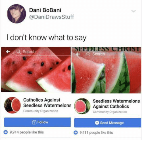 I Dont Know What To Say: Dani BoBani  @DaniDrawsStuff  I don't know what to say  SEEDLESS CHKIS1  Search  earch  Catholics Against  Seedless Watermelons  Community Organization  Seedless Watermelons  Against Catholics  Community Organization  Follow  Send Message  9,914 people like this  O 9,411 people like this