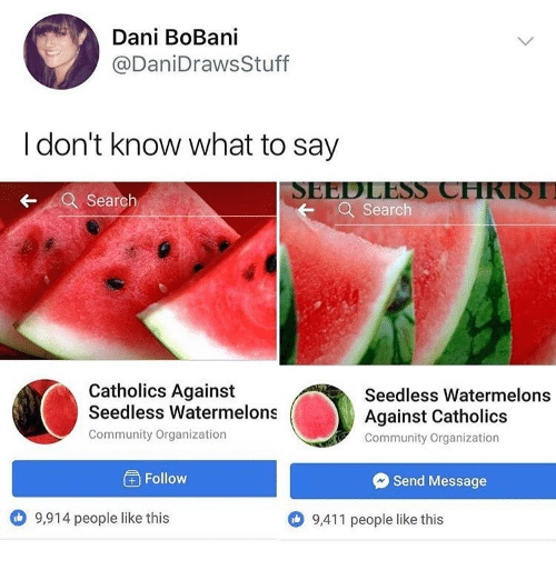 I Dont Know What To Say: Dani BoBani  @DaniDrawsStuff  I don't know what to say  SEEDLESS CHKISI  Search  Search  Catholics Against  Seedless Watermelons  Community Organization  Seedless Watermelons  Against Catholics  Community Organization  ) Follow  Send Message  9,914 people like this  9,411 people like this