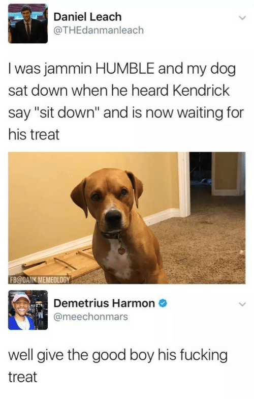 """Jammin: Daniel Leach  @THEdanmanleach  I was jammin HUMBLE and my dog  sat down when he heard Kendrick  say """"sit down"""" and is now waiting for  his treat  FB@DANK MEMEOLOGY  Demetrius Harmon  @meechonmars  well give the good boy his fucking  treat"""