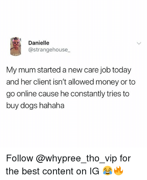 Dogs, Money, and Best: Danielle  @strangehouse  My mum started a new care job today  and her client isn't allowed money or to  go online cause he constantly tries to  buy dogs hahaha Follow @whypree_tho_vip for the best content on IG 😂🔥