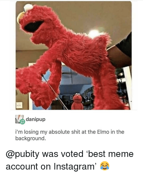 Elmo: danipup  i'm losing my absolute shit at the Elmo in the  background @pubity was voted 'best meme account on Instagram' 😂