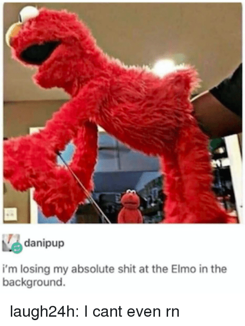 Elmo: danipup  i'm losing my absolute shit at the Elmo in the  background. laugh24h:  I cant even rn