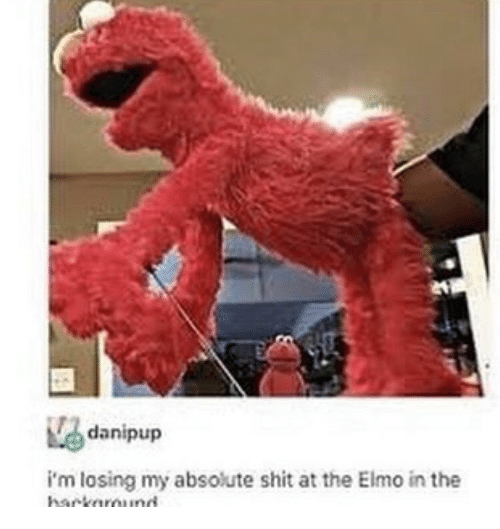 Elmo, Losing, and The: danipup  i'm losing my absolute shit at the Elmo in the