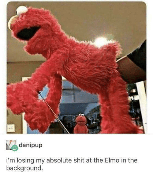 Elmo: danipup  i'm losing my absolute shit at the Elmo in the  background