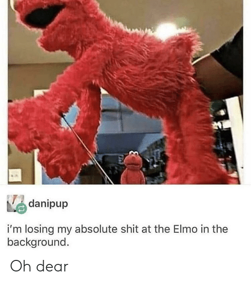 Elmo: danipup  i'm losing my absolute shit at the Elmo in the  background. Oh dear