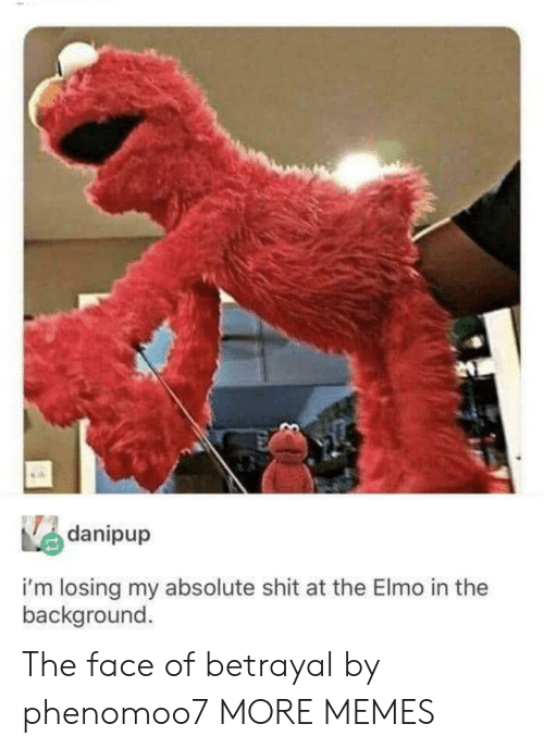 Elmo: danipup  i'm losing my absolute shit at the Elmo in the  background The face of betrayal by phenomoo7 MORE MEMES