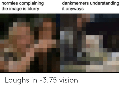Vision: dankmemers understanding  it anyways  normies complaining  the image is blurry Laughs in -3.75 vision