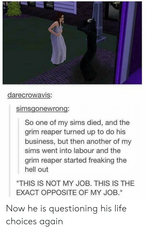 """grim reaper: darecrowaVIS:  simsgonewrong  So one of my sims died, and the  grim reaper turned up to do his  business, but then another of my  sims went into labour and the  grim reaper started freaking the  hell out  """"THIS IS NOT MY JOB. THIS IS THE  EXACT OPPOSITE OF MY JOB."""" Now he is questioning his life choices again"""