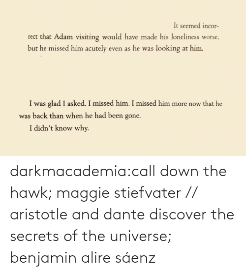 Discover: darkmacademia:call down the hawk; maggie stiefvater // aristotle and dante discover the secrets of the universe; benjamin alire sáenz