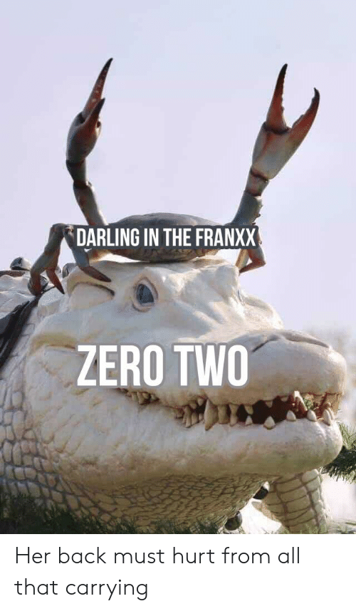 Anime, Zero, and All That: DARLING IN THE FRANXX  ZERO TWO Her back must hurt from all that carrying