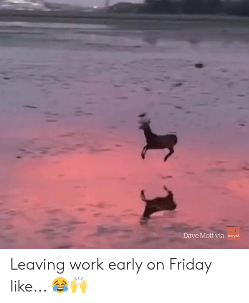 Friday, Work, and Via: Dave Mott via storytu Leaving work early on Friday like... 😂🙌