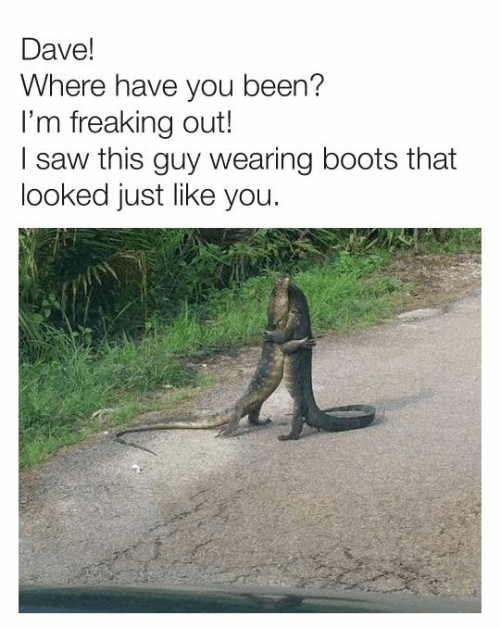 freaking out: Dave!  Where have you been?  I'm freaking out!  I saw this guy wearing boots that  looked just like you.