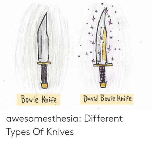 Different Types Of: David Bowie Knife  Bowie Knife awesomesthesia:  Different Types Of Knives