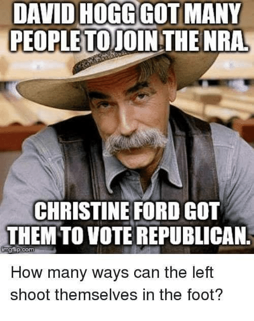 nra: DAVID HOGGGOT MANY  PEOPLETOTOIN THE NRA  CHRISTINE FORD GOT  THEM  TO VOTE REPUBLICAN.  malup.com  How many ways can the left  shoot themselves in the foot?