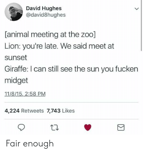 Reddit, Animal, and Giraffe: David Hughes  @david8hughes  [animal meeting at the zoo]  Lion: you're late. We said meet at  sunset  Giraffe: I can still see the sun you fucken  midget  11/8/15, 2:58 PM  4,224 Retweets 7,743 Likes Fair enough